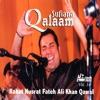 Sufiana Qalaam - Vol. 14