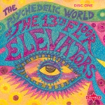 13th Floor Elevators - You're Gonna Miss Me