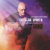 Catch the Spirit II - Jacques Stotzem