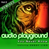 You Never Know [feat. Snoop Lion] [Remixes], Audio Playground