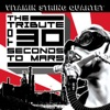 The Tribute to 30 Seconds to Mars, Vitamin String Quartet
