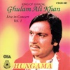Hungama Live In Concert Vol 1