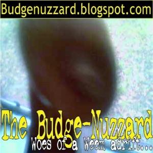 budgenuzzard's Podcast