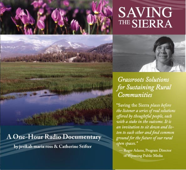 Saving The Sierra