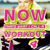 NOW That's What I Call A Workout 4-Various Artists