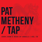 Albim  Pat Metheny - Pat Metheny