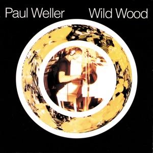 Wild Wood Mp3 Download