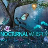 Nocturnal Whisper, Vol. 2 (Smooth Chill Out Grooves)