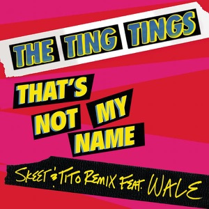 That's Not My Name (Skeet & Tito Remix) [feat. Wale] - Single Mp3 Download