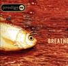 Breathe, The Prodigy