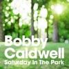 Saturday In the Park (サタデー・イン・ザ・パーク) - Single ジャケット画像
