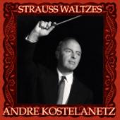 [Download] Emperor Waltz MP3