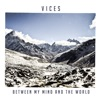 Between My Mind and the World, Vices