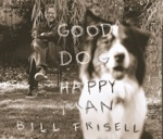 Bill Frisell - My Buffalo Girl