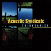 Acoustic Syndicate - Good While It Lasted