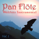 Welthits Instrumental, Vol. 1