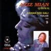 Akhian Dee Gali Punjabi Vol 9
