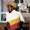 Wyclef Jean - Rebel Music  feat. Prodigy of Mobb Deep