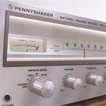 Pennyshaker