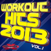 Workout Hits 2013 Vol. 1 (20 Chart Topping Songs) - Dynamix Music Workout