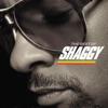 The Best of Shaggy, Shaggy