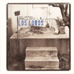 Los Lobos - Someday