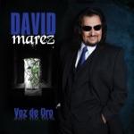David Marez - Imposibilidad