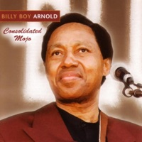 I Wish You Would (Billy Boy Arnold)