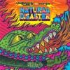 Natural Disaster Laidback Luke vs Example Remixes