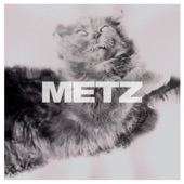 Metz - Dirty Shirt
