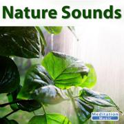 Ocean Sounds - Sounds of Nature - Sounds of Nature
