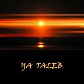Ya Taleb