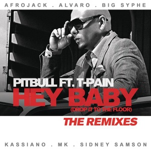 Hey Baby (Drop It to the Floor) [feat. T-Pain] - The Remixes Mp3 Download