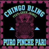 Chingo Bling - Puro Pinche Pari