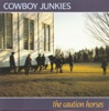 The Caution Horses, Cowboy Junkies