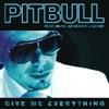 Give Me Everything (feat. Ne-Yo, Afrojack & Nayer) [Bingo Players Remix] - Single ジャケット写真
