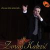 Zaboravi, Zaboravi - Zoran Kalezic