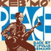 Keb Mo - For What Its Worth