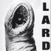 Power of Lard - EP ジャケット写真
