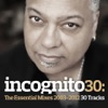 Incognito 30: The Essential Mixes (2003-2012) ジャケット写真