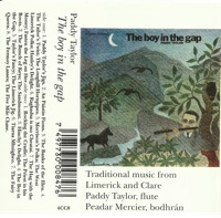 The Boy in the Gap by Paddy Taylor on Apple Music