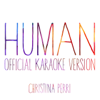 Human (Official Karaoke Version) - Christina Perri