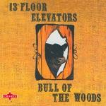 13th Floor Elevators - Street Song