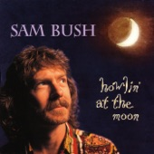 Sam Bush - Go With The Flow
