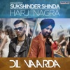 Dil Vaarda Single