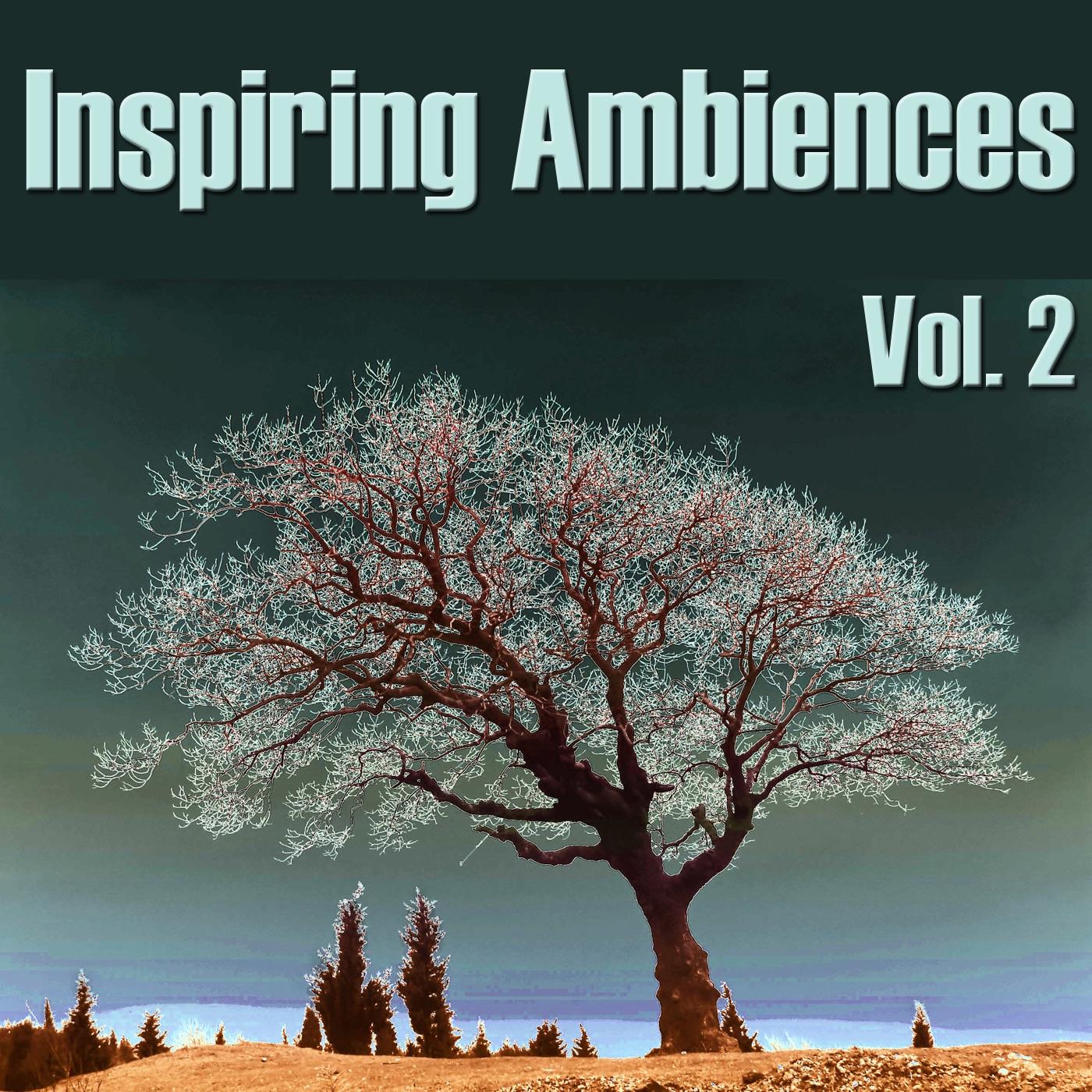 Inspiring Ambiences, Vol. 2