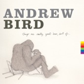 Andrew Bird - Don't be Scared