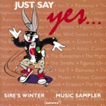 "Echo & The Bunnymen - Lips Like Sugar (12"" Mix)"