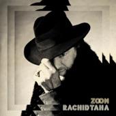 Rachid Taha - Les artistes