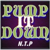 PUMP IT DOWN [Feat.mcKY] / N.T.P